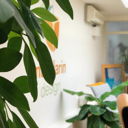 Mandarin-Office10